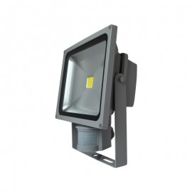 Projecteur Exterieur LED Gris avec Détecteur 30W 6000°K